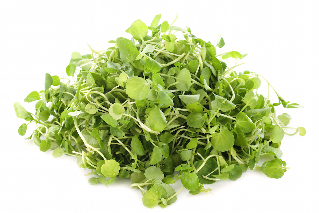 Watercress number one superfood