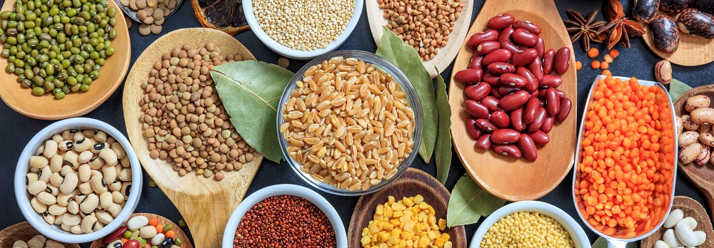Legumes are a great source of protein